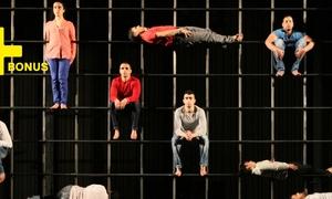 vignette Stage de cirque avec le Groupe Acrobatique de Tanger